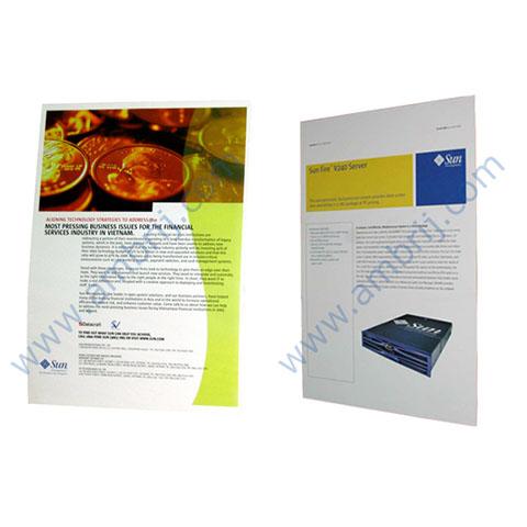 Printing – Offset & Digital – Flyer-Folder-Poster-Standee PP-FF-002